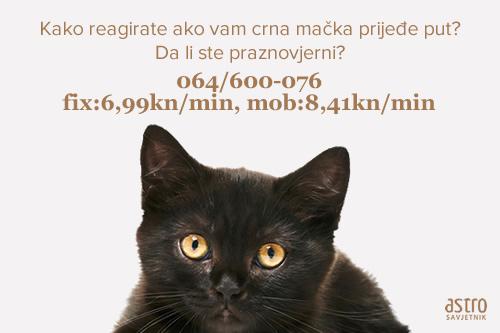 crna mačka, urok, zaštita, Astrosavjetnik, savjetnici, Novatv, Emisija, Najbolji savjetnici