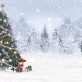 Hoćemo li imati bijeli Božić?