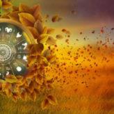 Jesenji horoskop za novac!
